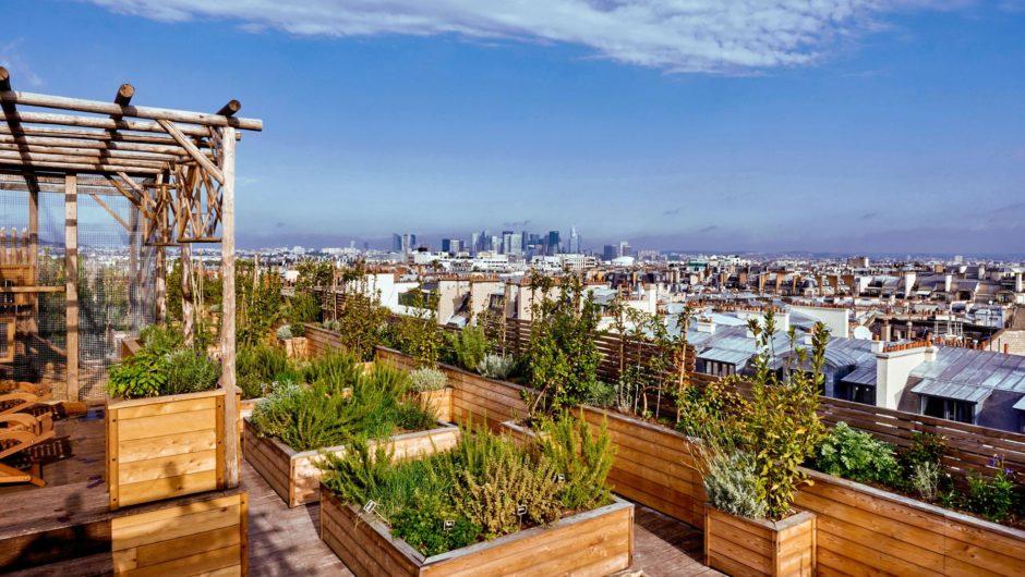 Summer 2021 : Le retour des terrasses